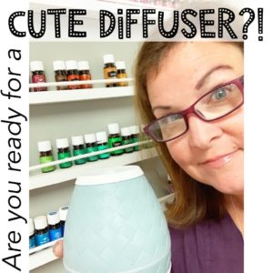 Ready for a Cute Diffuser?!